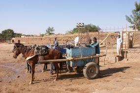 写真3.西ダルフール州の馬車による水運搬