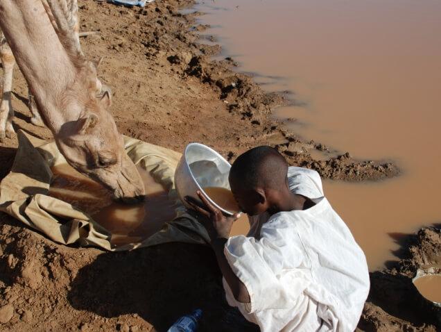ESSのあゆみ スーダン