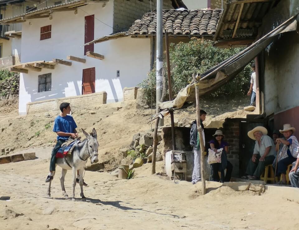 ESSのあゆみ ペルー